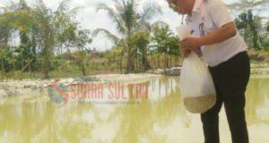 Realisasi Program 1000 Kolam, Wabup Salurkan 70 Kantong Bibit Ikan